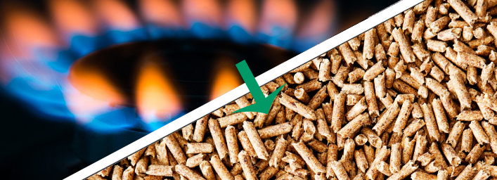 From Natural Gas to Biomass Pellet