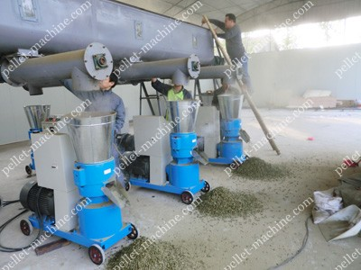biomass pellet machine making pellets
