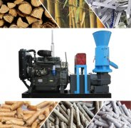 Cost-effective Diesel Pellet Machine for You