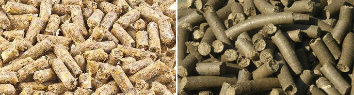 Feed pellet without cooling: coarse surface, high softness.