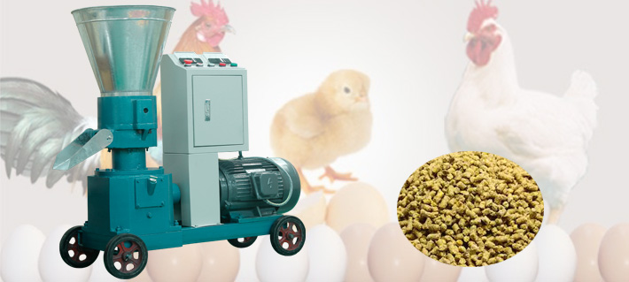 Poultry Feed Pellet Machine Grows Your Animals Better