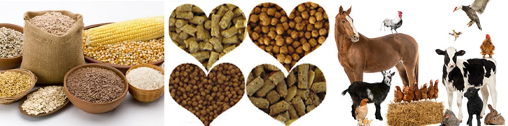 Purpose for Feed Pelleting
