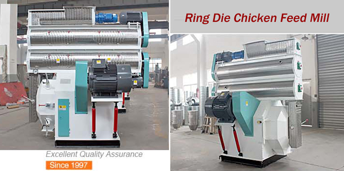 Ring Die Chicken Feed Mill