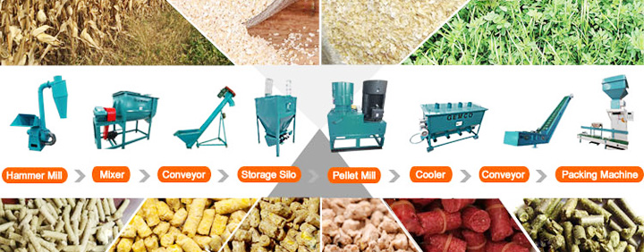 Small Animal Pellet Feed Processing Line for Sale