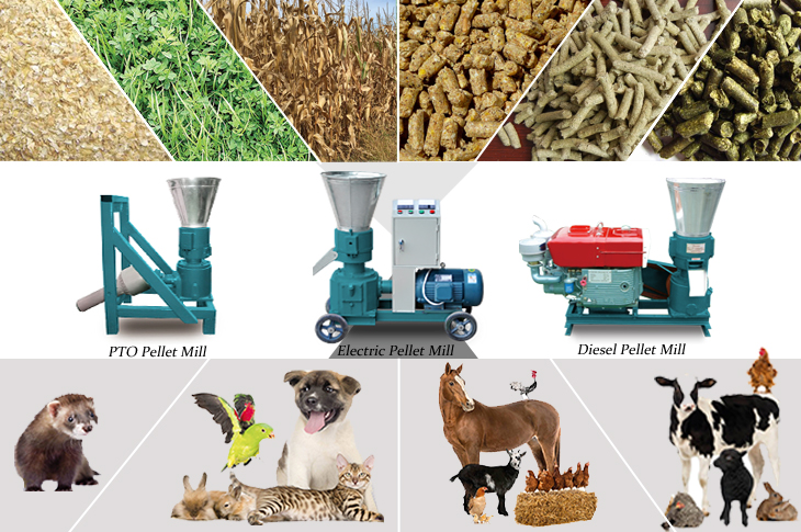 Small Feed Pellet Machines